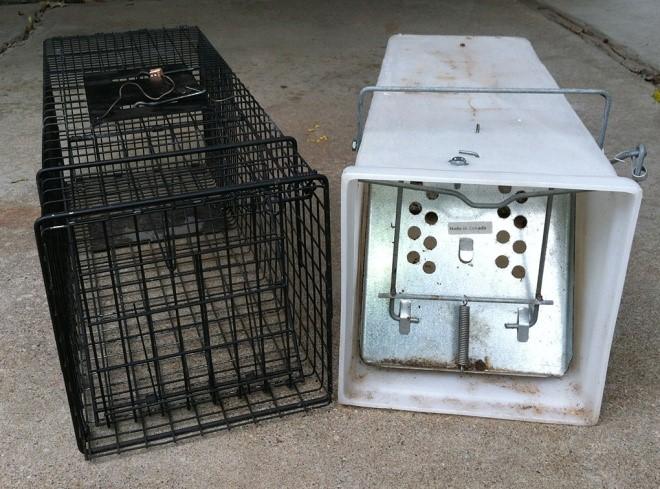 5_Cage_traps