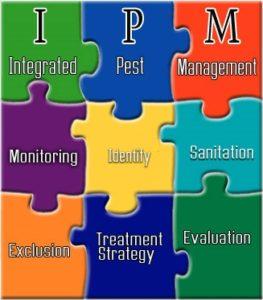 IPM_Puzzle