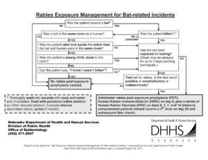 Rabies Treatment Protocol