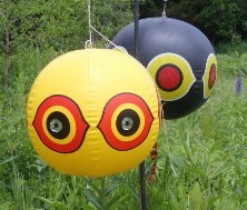 Figure 12. Scary-eye balloons move in the wind and frighten birds. Photo by Jan R. Hygnstrom.