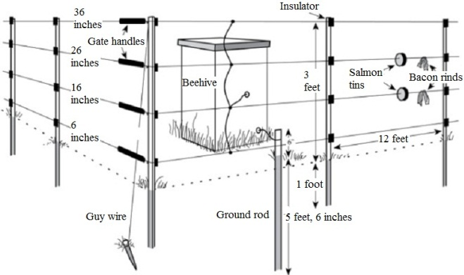 Figure 6. Electric polytape portable fence. Image by Prevention and Control of Wildlife Damage (PCWD).