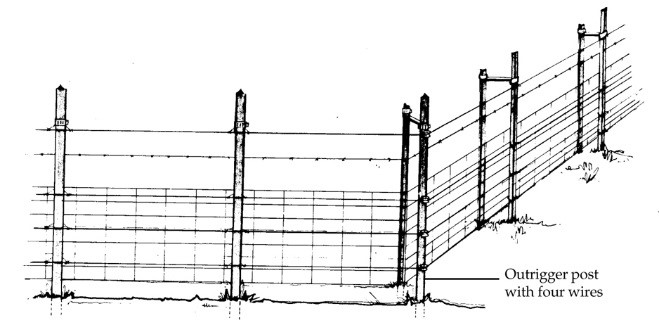 Figure 6. Woven-wire fence for livestock that has been modified with electrified wire. Image by PCWD.